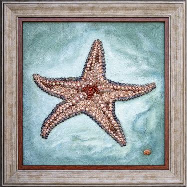 Sea star in red